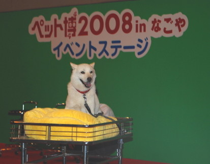 20080713_162