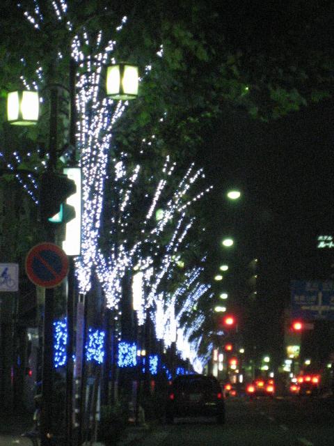 2008124_017