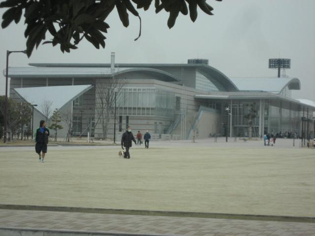 2009118_091